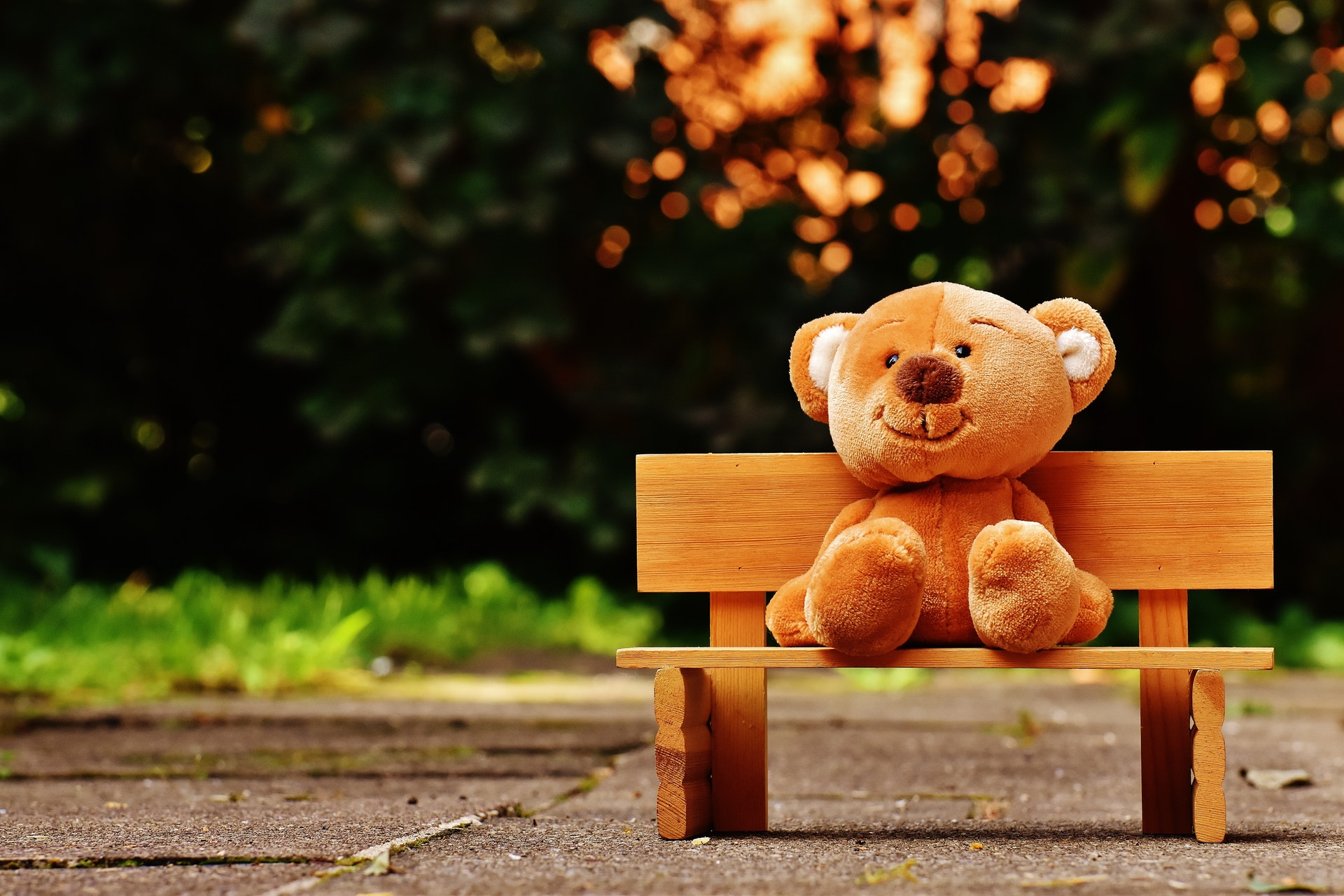 an image of a teddy bear on a bench